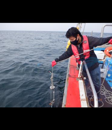 해양화학(수질) 조사